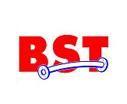 logo-bst